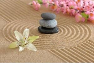 Zen Garden Perfection of Yin and Yang
